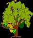 tree-698394__180