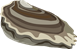 oyster-576545__180